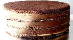 plazma torta sa crnom i belom cokoladom