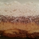 noblica-torta-sa-plazmom